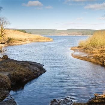 Turkey & Tinsel in Cumbria & Border Country